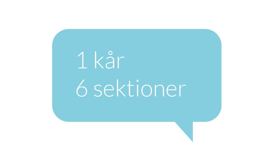 6 sektioner_pratbubbla_turkos